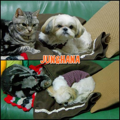 Junhana